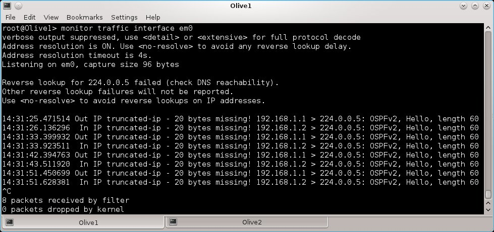 How to run JUNOS installed on Qemu on VirtualBox – Part2 UDP Tunnels