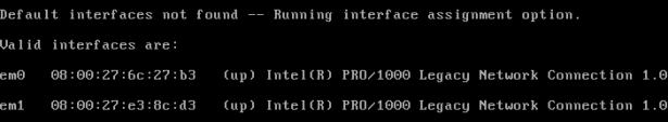 Picture4-List_of_Detected_Interfaces