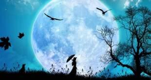 Art in the Dark - The Milton Moon Walk