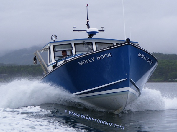Molly Hock, a Mitchell Cove 35 finished by Vaughan Clark for Mike Carroll of Southwest Harbor, ME in 2012.