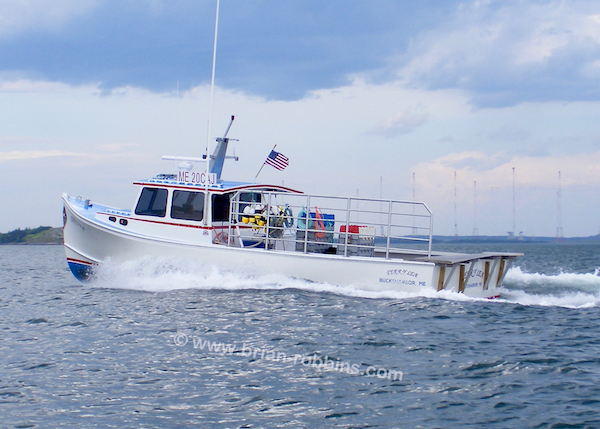 "You could refer to Bucks Harbor, ME fisherman Billy Moore's Terry Lea as a 42' Osmond, but it's actually a hybrid: Terry Lea was birthed as an Osmond 40 hull by H&H Marine in Steuben, then lengthened and widened before heading to Feeney's Boat Shop in Cutler to be finished.  The result (42'x16'x4'6"") gives Moore the workspace of a standard Osmond 42, but a much shoaler draft for fishing around the shores.  (2016)"