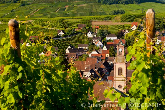 Riquewihr Alsace France Vineyards Wine Route Photography Workshop