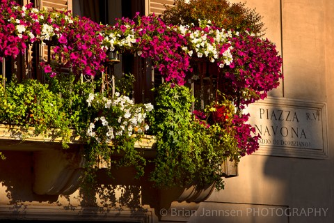Balcony Window Box Flowers Piazza Navona Rome Italy
