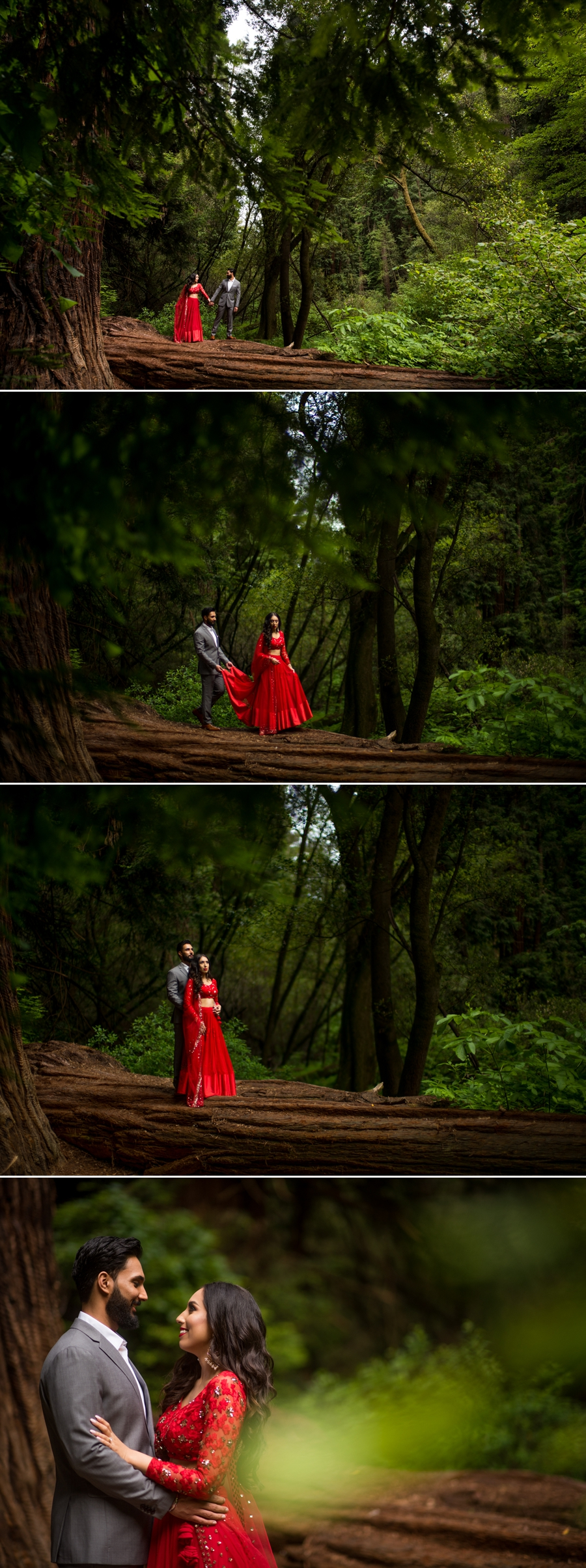 Beautiful Indian Couple Engagement Photos at Muir Woods  The Cypress Tree Tunnel  Anju  Yash