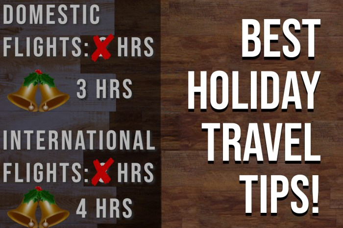 Best Holiday Travel Tips For Navigating a Busy Airport