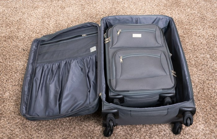 Holiday Travel Tips Two suitcases