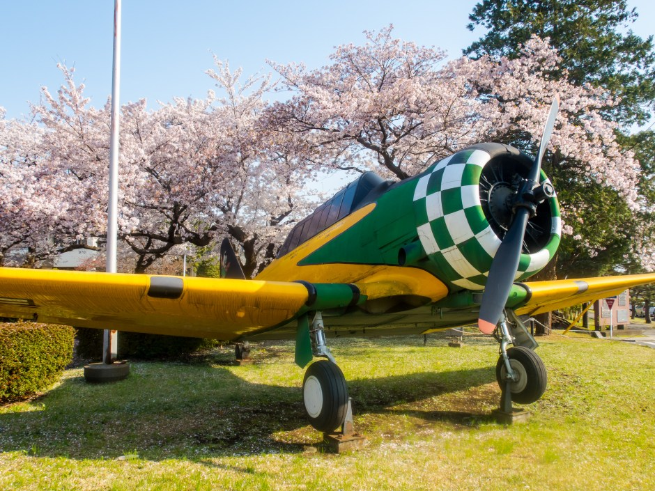 Airplane and cherry blossoms in Atsugi - Magician Brian Miller