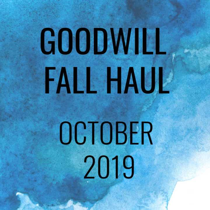 Goodwill Fall Haul – October 2019