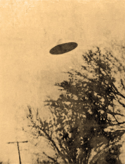 photograph of flying saucer over trees
