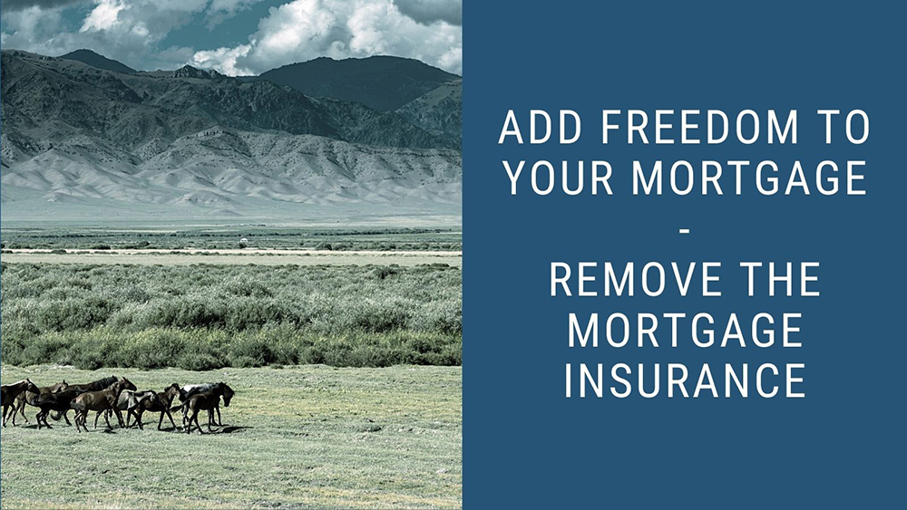 Colorado mountains with horses and the caption reading add freedom to your mortgage - remove mortgage insurance.