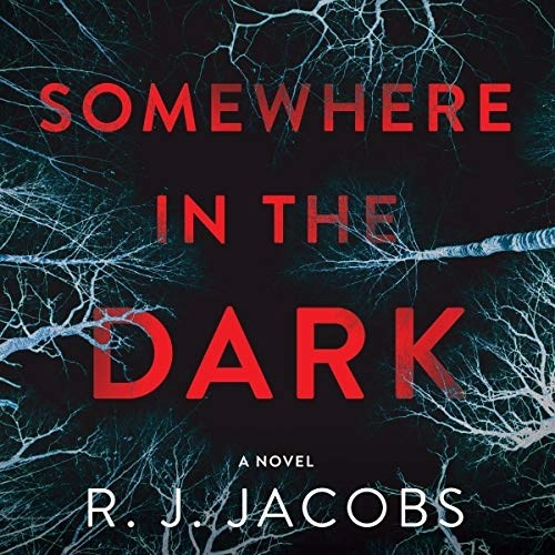 Somewhere in the Dark by R.J. Jacobs