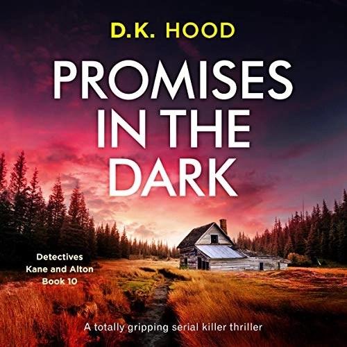 Promises in the Dark by D.K. Hood