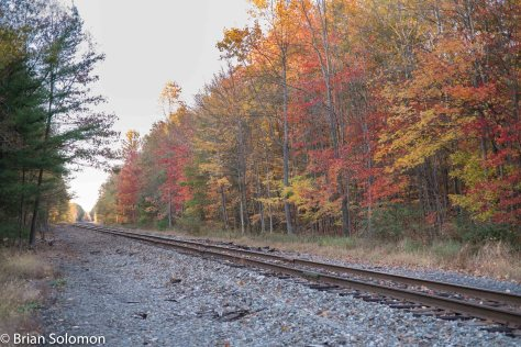 Radiant foliage along the old DL&W mainline at Henryville, PA. FujiFilm X-T1 digital photo.