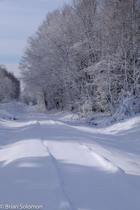 Tracks in the Snow_DSCF0849