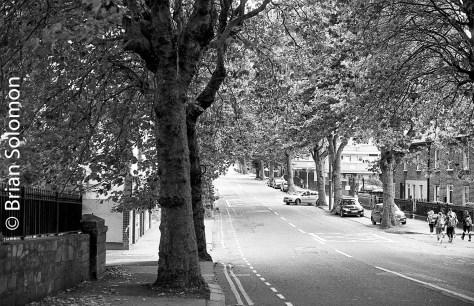 South Circular Road at Islandbridge. Ilford HP5.