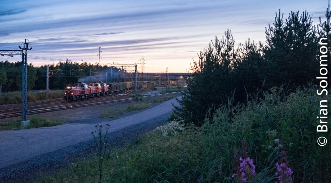 Timber Train After Midnight