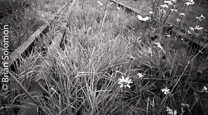 Old Tracks Shelburne Falls, Massachusetts.