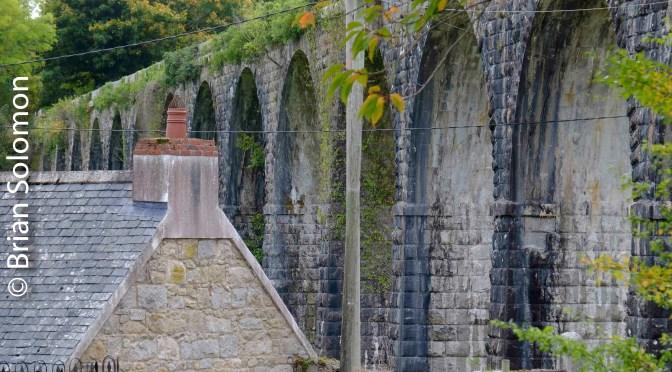 Magnificent Vestige at Borris, County Carlow.