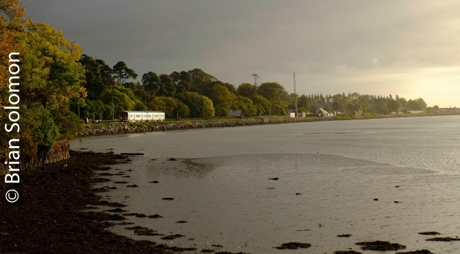 Glounthaune Sunrise—Cobh Junction Glint in 3 photos.