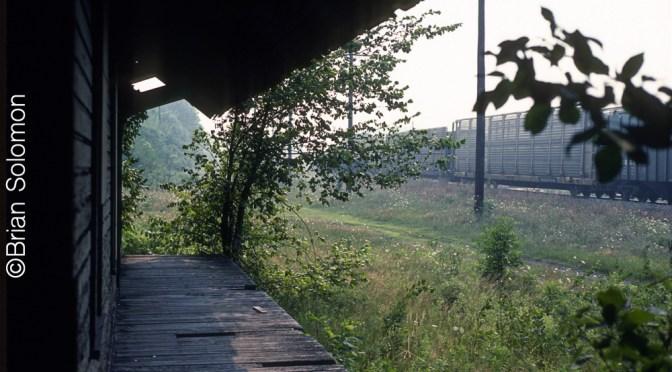 Summer Evening at Silver Creek—July 24, 1987.