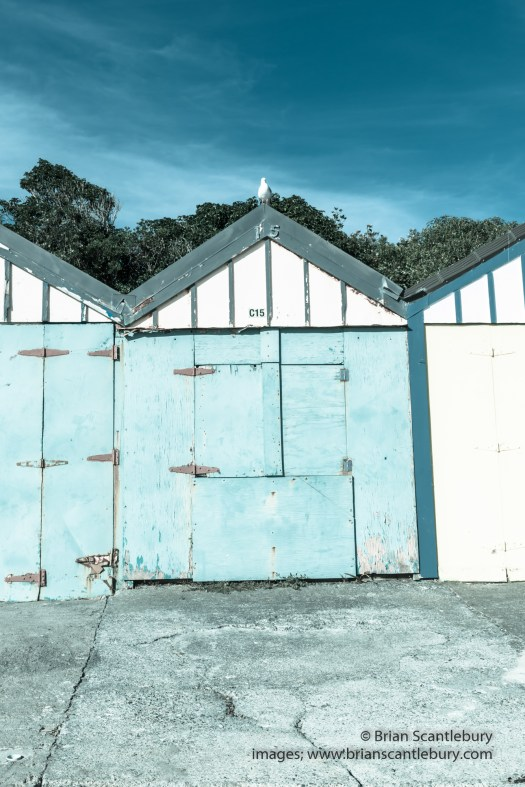 Titahi individually leased and painted boatsheds along the beach Wellington New Zealand