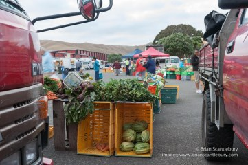 Lions Club of Titahi Bay Porirua Saturday Market early morning on Feburary 13 2016 stall holders are open for business and locals arriving and wandering buying food, fresh produce and nick nacks. Model/property Release; No, for personal and editorial use.