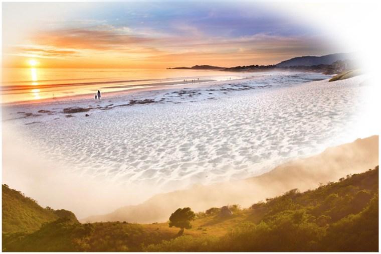 Oak_beach2