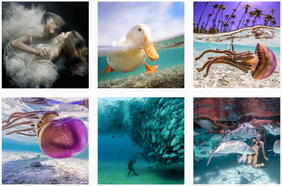 underwater instagram feature accounts