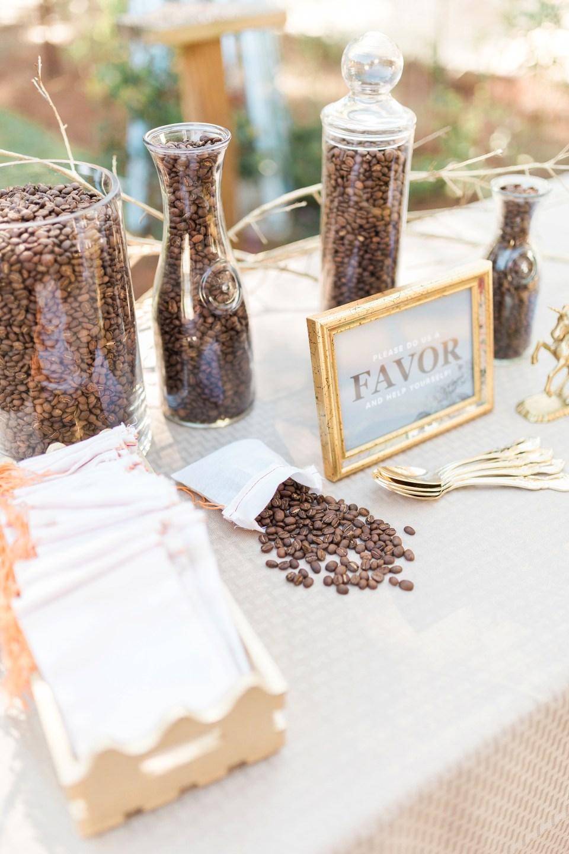 Backyard Ocala Wedding - Bri Cibene PhotographyBri Cibene Photography