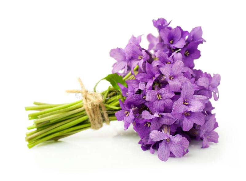 mazzo-delle-viole