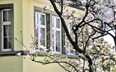 5 Hot Tips for Selling Your House this Spring or Summer
