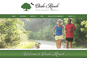 Real Estate Developer Website