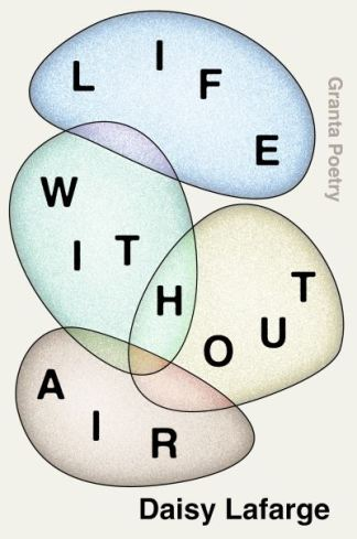 Life Without Air - Daisy Lafarge
