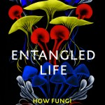 Entangled Life: How Fungi Make Our Worlds, Change Our Minds and Shape Our Future - Merlin Sheldrake