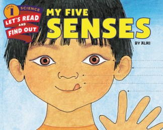 My Five Senses -