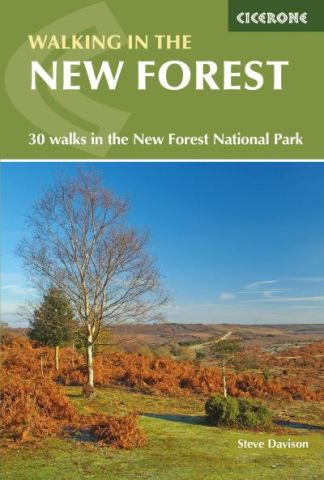 Walking in the New Forest - Davison Steve