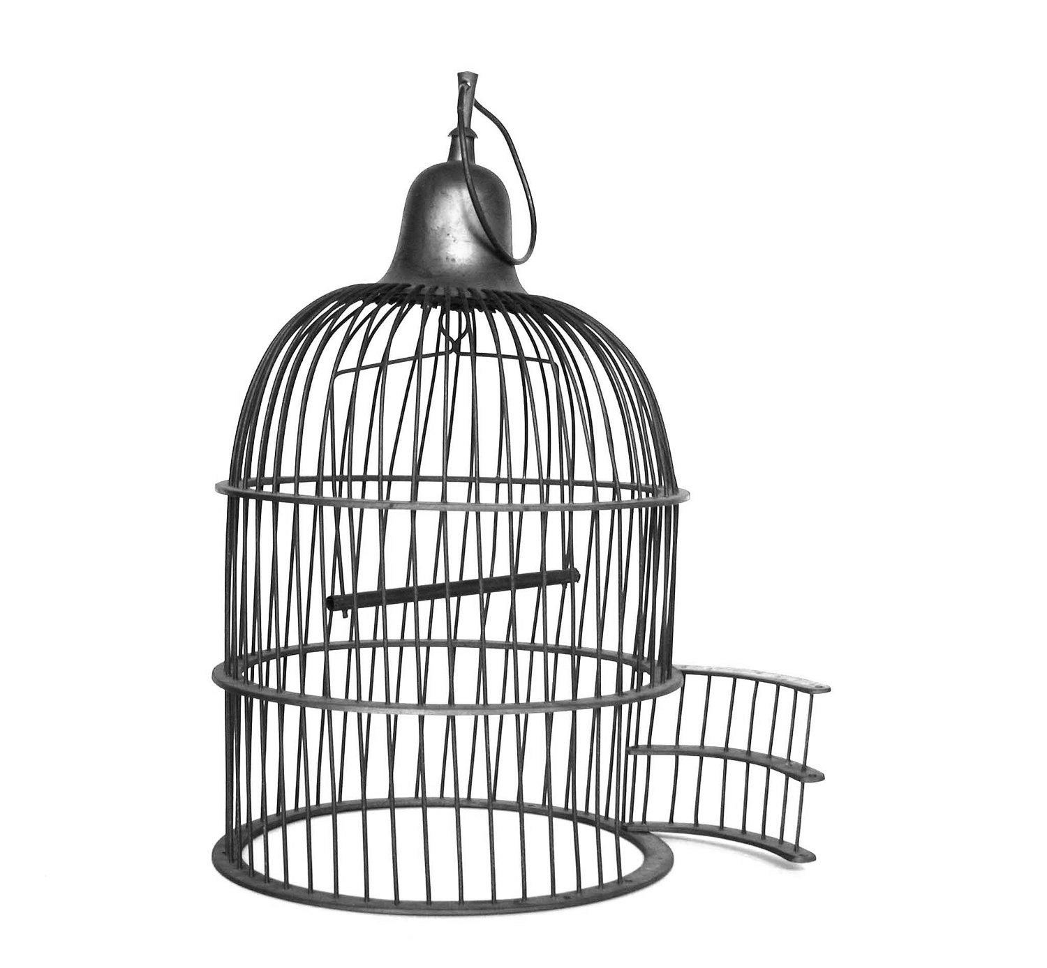 Empty Bird Cage Drawing