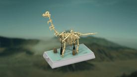lego ideas dino fossils (7)
