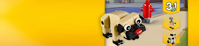 30542-cute-pug--201903--na--shortened-landing-background--large