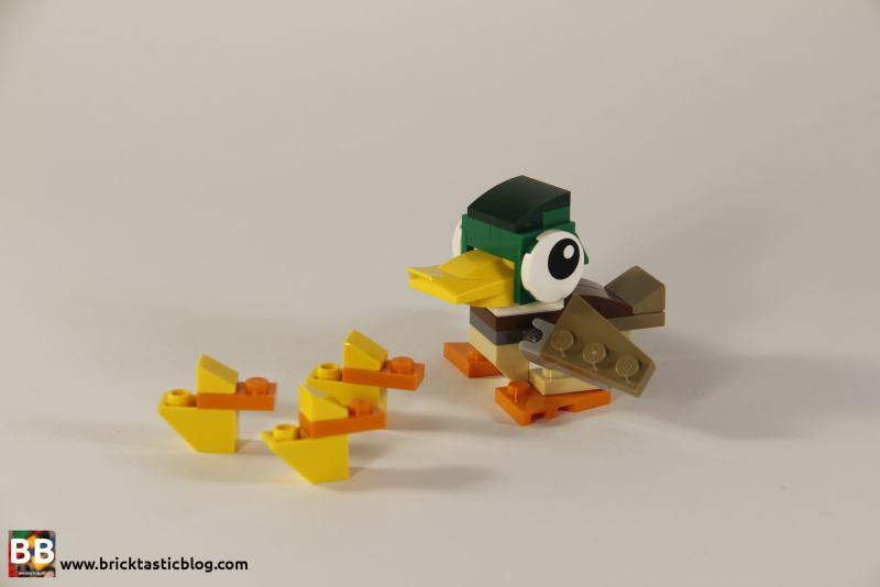 31044: Park Animals Ducks