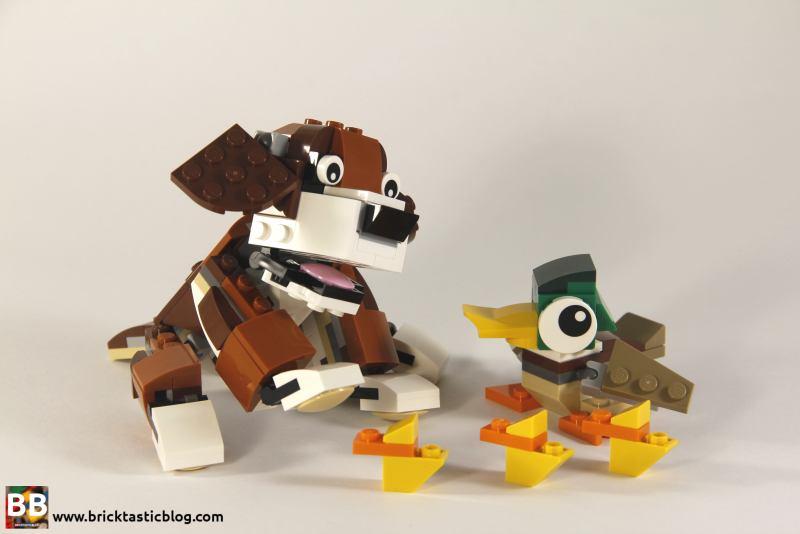 31044: Park Animals