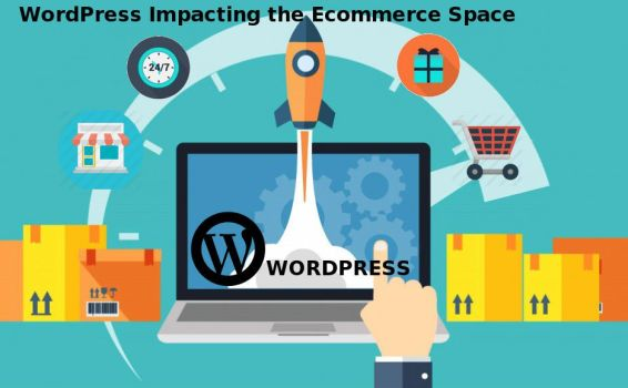 The Impact WordPress Has Had on the Web