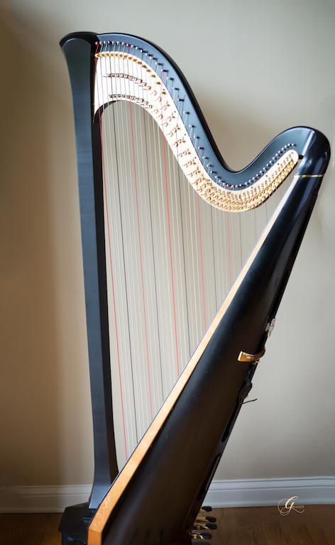 Kentucky Harpist