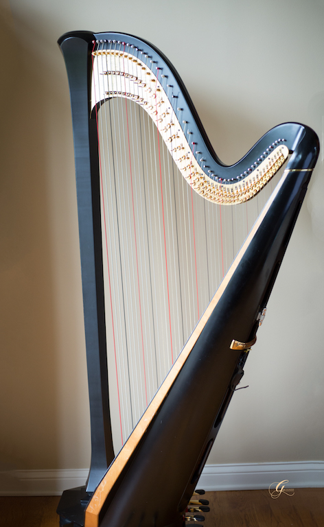 Kentucky Harpist