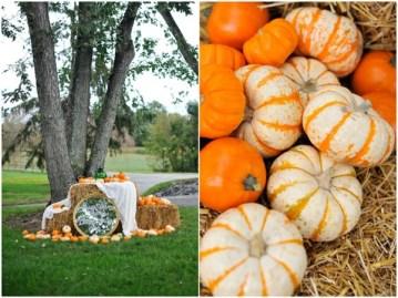 Fall wedding pumpkin patch | Natalie Franke Photography (27)