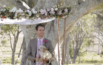 The Puppy At The End Of The Aisle – A Wedding Film