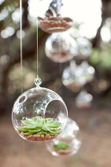 Ultimate Inspiration Guide for Succulents at your Wedding | Bridal Musings Wedding Blog 27