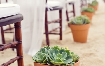 Ultimate Inspiration Guide for Succulents at your Wedding | Bridal Musings Wedding Blog 4