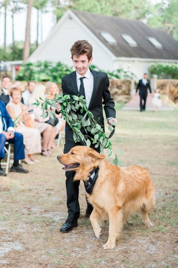 Gilded Florida Farm Wedding with an Adorable Golden Pup | Lauren Galloway Photography 24