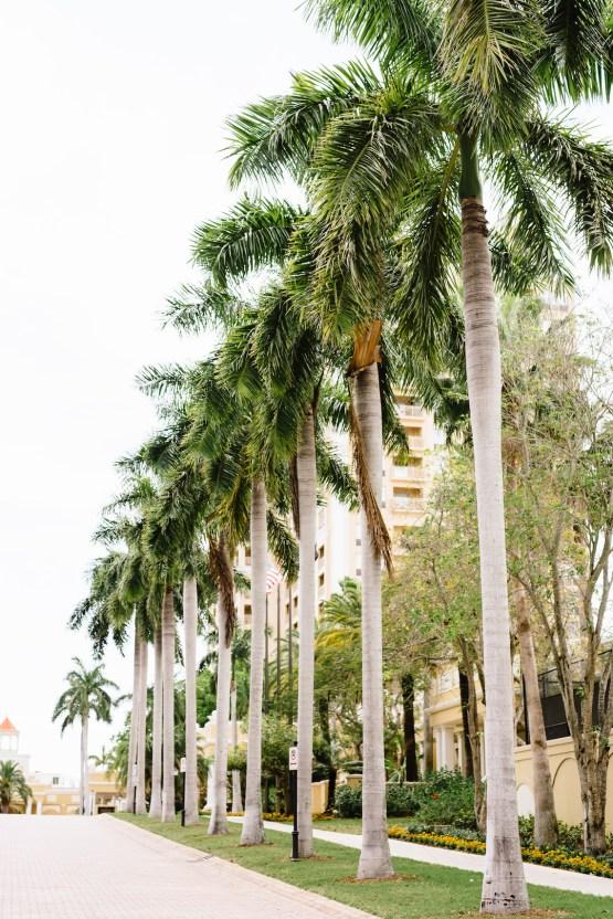 Ritz Carlton Sarasota Wedding | Cathy Durig Photography | Bridal Musings 15